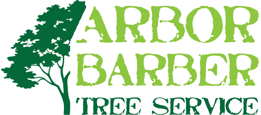 The Arbor Barber | Langley Tree Service & Tree Pruning