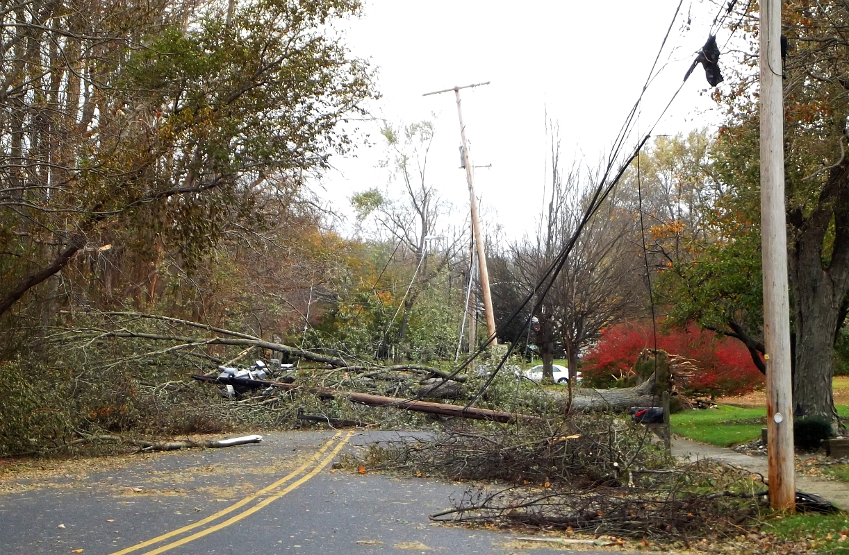 Power-Lines-and-Trees-are-Dangerous