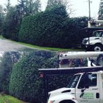 The-Arbor-Barber_Tree-Service-Langley_Truck-Double-Shot